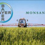 Staatliche Erpressung zugunsten BayerMonsanto? Kleinbauern in El Salvador werden gezwungen genmanipuliertes Saatgut von Bayer anzubauen!