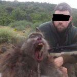 Krank! Für nur 20 Dollar können Touristen einen Affen töten und mit nach Hause nehmen - Safari companies offer baboon killing for as little as $20