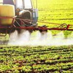 Alarmierende Zahlen! Pestizide im Grundwasser nachgewiesen!