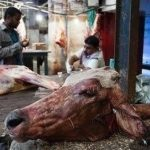 Indiens Lederindustrie - Tiere werden lebend gehäutet! - Harrowing images from leather industry show animals skinned alive