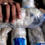 Trotz Coronavirus: Der Handel mit Wildtieren aus Asien nach Europa boomt - Wildlife smuggling Indonesia: Birds jammed inside plastic water bottles recovered