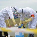 """Alarm in China wegen Beulenpest - Der """"Schwarze Tod"""" taucht in der Inneren Mongolei wieder auf - Black Death Is Back! Bubonic plague case detected in China's Inner Mongolia region"""