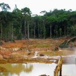 Gigantische Plünderung der Erde mithilfe der Deutschen Bank - unter dem Deckmantel der Nachhaltigkeit! - The gigantic plundering of the earth - DEUTSCHE BANK'S LOAN TO HALCYON AGRI