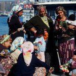50 Jahre später, wie steht es um die Rechte der Roma? After 50 years, where do Roma rights stand now?