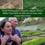 """""""Amazônia muss weiterleben""""- Fotograf Sebastião Salgado pflanzte mit seiner Frau auf abgeholzten Flächen einen neuen Wald- Sebastião Salgado: 'Amazonia must live on'-Formerly barren land in Brazil is now thriving with hundreds of new flora and fauna-4 million trees planted in the family farm"""