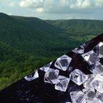 #SaveBuxwahaForest- Auf der Suche nach Diamanten wird ein Krieg gegen die Natur geführt - Deforestation in India! A Call To Save The Buxwaha Forest After The Forestland Is Set To Be Destroyed For Diamond Mine