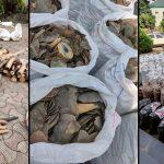 Nigeria ist Hotspot für den grausamen illegalen Handel von Pangolinen nach Asien- die Schuppen werden als Arzneimittel verwendet- Nigeria has become a major hotspot for the illegal pangolin trade-Smuggling networks that once focused on ivory are increasingly turning to pangolins.